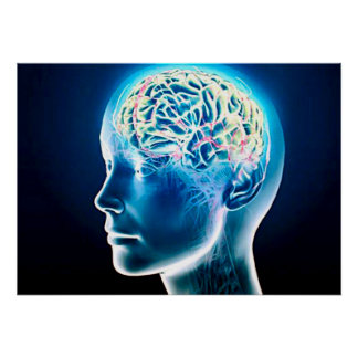 Virtual Human Brain Airbrush Art Poster