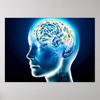 Virtual Human Brain Airbrush Art Poster