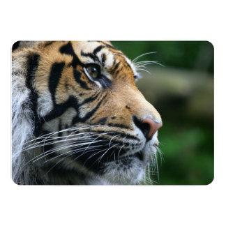 Visage magnifique de tigre de Bengale Invitations Personnalisées