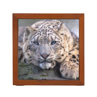 Vishnu Snow Leopard Desk Organizer