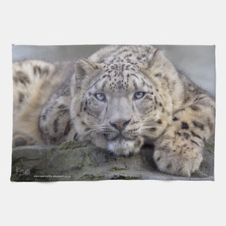 Vishnu Snow Leopard Kitchen Towel