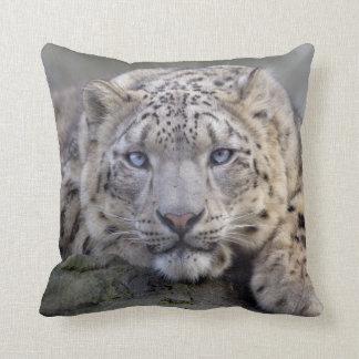 Vishnu Snow Leopard Pillow