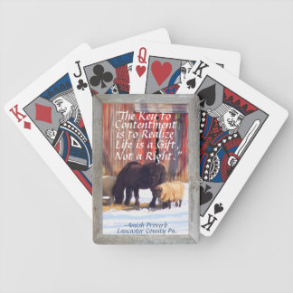 Visit Amish Country Lititz Pa.! Poker Deck