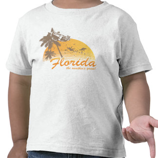 Visit Florida, the Weather's Great - hurricane Shirts