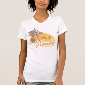 Visit Florida, the Weather's Great - hurricane Shirt