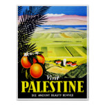 Visit Palestine ~ See Ancient Beauty Revived Posters
