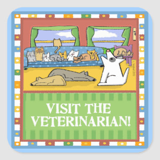 Visit the Veterinarian Square Sticker