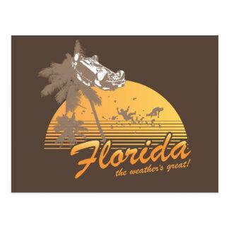 Visitez la Floride, le temps splendide - ouragan Carte Postale