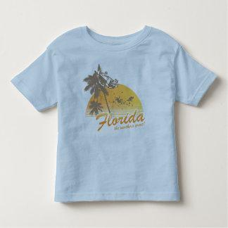 Visitez la Floride, le temps splendide - ouragan Tee-shirts