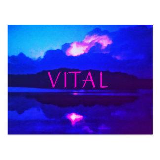 VITAL Heat Lightning Postcard