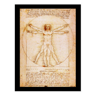 Vitruvian Man - Leonardo Da Vinci Postcard