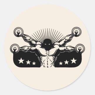 Vitruvian Reps Classic Round Sticker