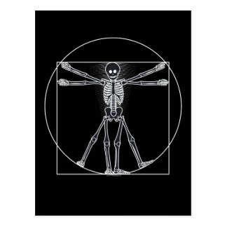 Vitruvian Skeleton Dark Postcard