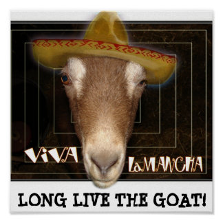 VIVA LAMANCHA, LONG LIVE THE GOAT! POSTER