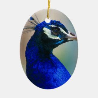 vivid blue peacock ceramic ornament