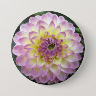 Vivid Lavender Creme Dahlia 3 Inch Round Button