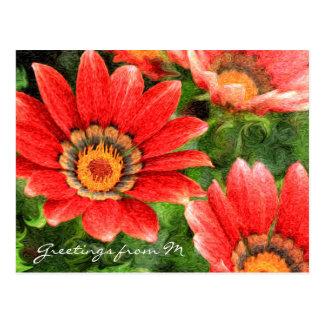 Vivid Orange African Daisy Digital Oil Painting Postcard