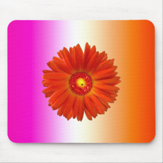 Vivid Orange Gerbera Daisy on Pink Orange Mouse Pad