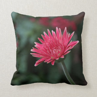 Vivid Pink Gerbera Daisy on Green Background Throw Pillow