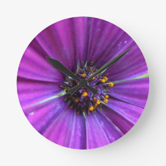 Vivid Purple Daisy Round Clock