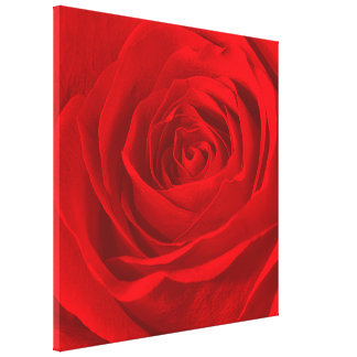 Vivid Red Rose Center Floral Photography Canvas Print