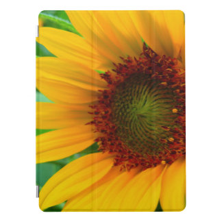 Vivid sunflower iPad pro cover