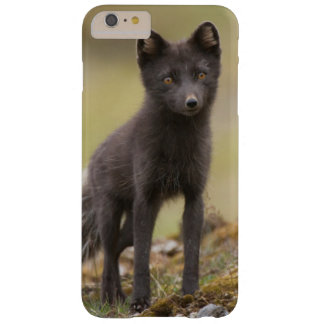 Vixen searches for food barely there iPhone 6 plus case
