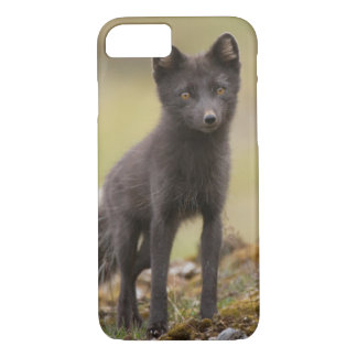 Vixen searches for food iPhone 7 case