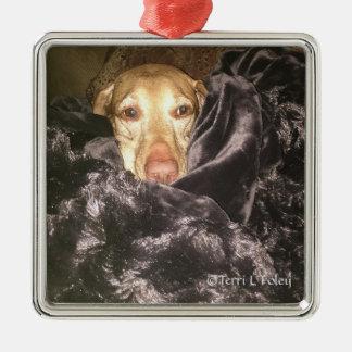 Vizsla  Christmas Ornament