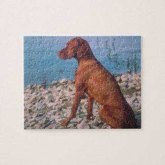 Vizsla Dog Puzzle