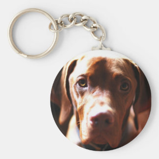 VIZSLA - key chain