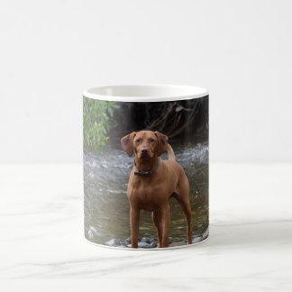 Vizsla on the river coffee mug