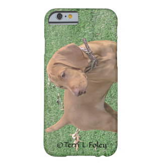 Vizsla Puppy Iphone Case