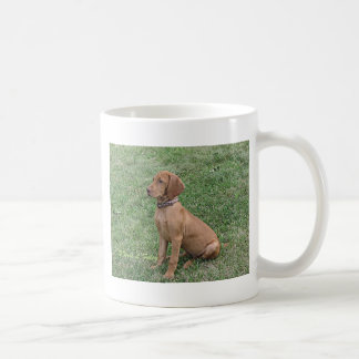 Vizsla Puppy Sitting Coffee Mug