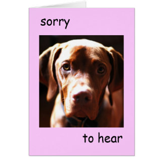 Vizsla -  sorry to hear you're pawly (pink) card