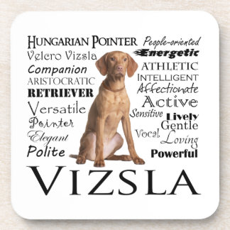 Vizsla Traits Coaster Set