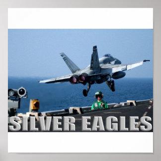 VMFA 115 Silver Eagles Poster