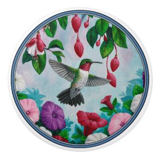 Vol de colibri dans le jardin d'agrément