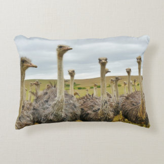 """VOLSTUIS"" DECORATIVE PILLOW"
