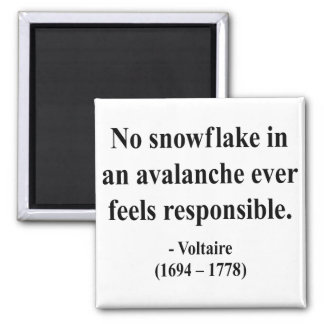 Voltaire Quote 6a Magnet