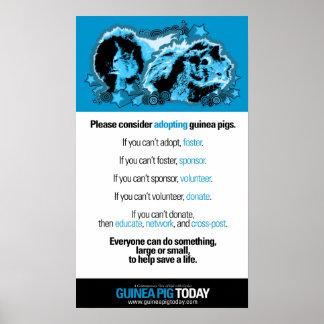 Volunteer Ideas Poster - Guinea Pig Today
