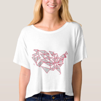 Voronoi Design of the United States Map T-shirt