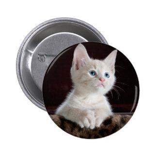 Votre bouton de coutume de photo macaron rond 5 cm