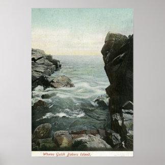 Vue d'île de boulangers, baleines Gulch Poster