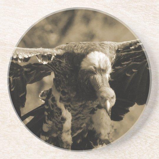 Vulture Coaster