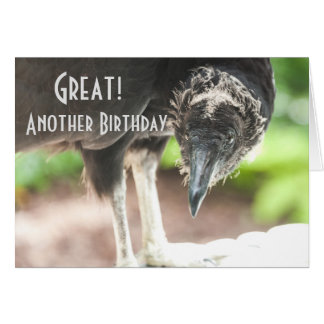 vulture Happy Birthday Card