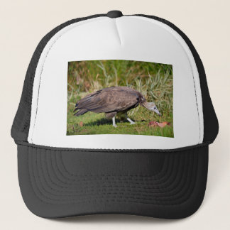 Vulture on grass trucker hat