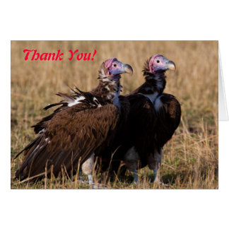 Vulture Pair Thank You Card