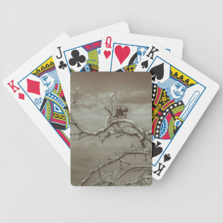 Vultures at Top of Leaveless Tree Bicycle Playing Cards