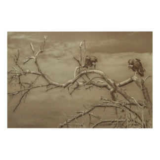 Vultures at Top of Leaveless Tree Wood Print